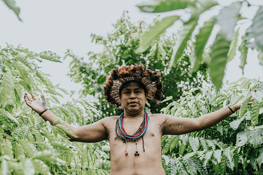 Projeto Tribos | Café 3 Corações